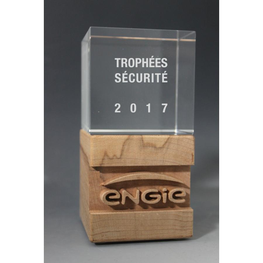 Trophée Bois Duo 3D