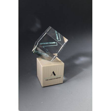 trophée verre et bois