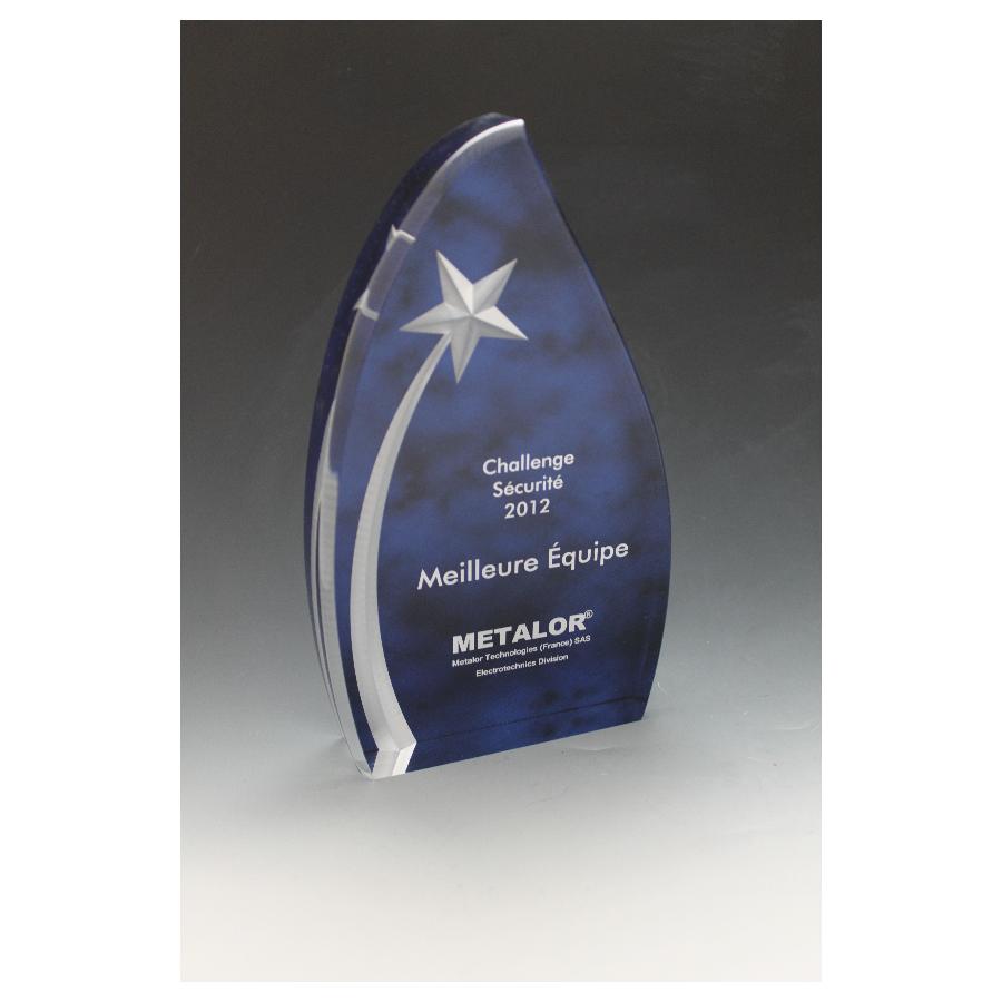 Trophée plexiglass étoile 2010