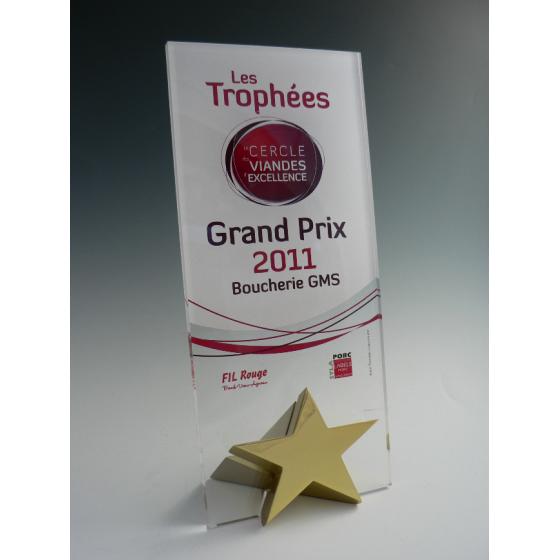 Trophée plexiglass étoile rectangle