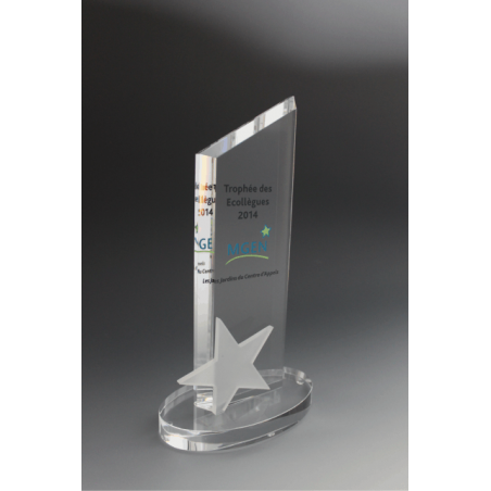 trophée MGEN en verre tryje