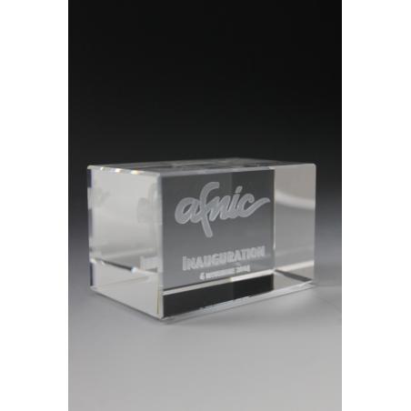 trophée inauguration Afnic 2015 par tryje