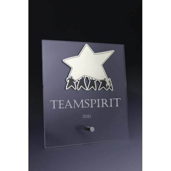 Trophée plexiglass esprit d'équipe