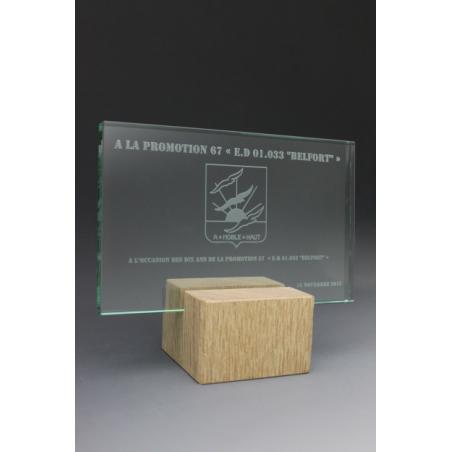 Trophée bois verre rectangle 2