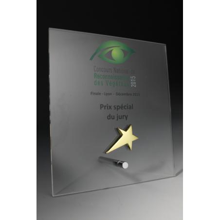 Trophée plexiglass Eco 3