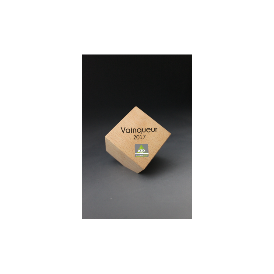 Trophée Bois Cube pan coupé