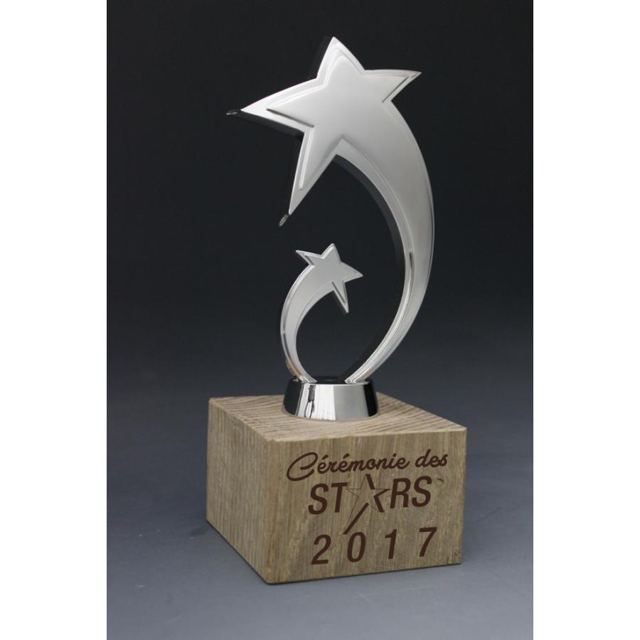 Trophée Bois Star