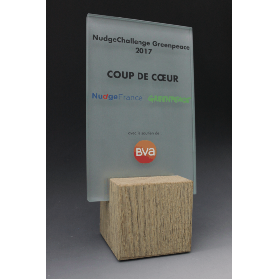 Trophée bois verre rectangle