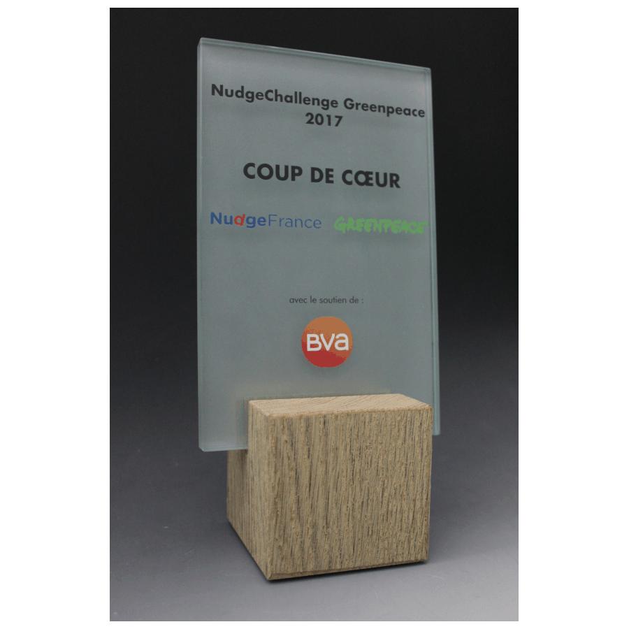 Trophée bois verre rectangle