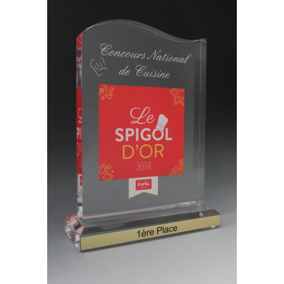 Trophée plexiglass vague II